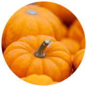 ingredients-pumpkin