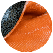 ingredients-salmon