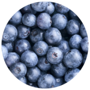 ingredients-blueberry