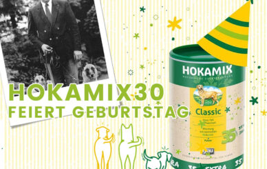 featured-img-hokamix