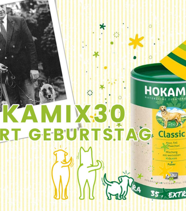 featured-img-hokamix